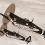 The Cross Squadron Spitfires by RPRMT0054611