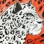 Cheetah by Sawke