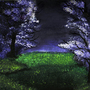 Purple land by Sawke