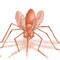 Mosquito Demon