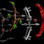 Bows 1 by matt-likes-swords