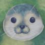 odder seal