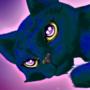 Zander the Space Cat!!!
