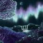 Sleeping under the aurora borealis