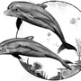 Dolphins by Lowgan