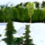 Grouse Mountains Flood