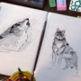 Wolf Sketches #1