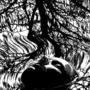 Apollonia Saintclair 768 - 20180428 L'animus (The end)