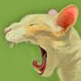 Cat by Mandapants