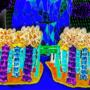 Pillar Heights Gate 2 - Magicka Bipolaroid pg 48