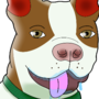 Bennett the french bulldog Boston terrier mix