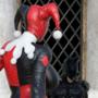 Harley VS Batsy intro