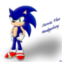 Sonic The Hedgehog by sonicdark389
