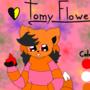 New Tomy :3