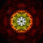 soul reviver by Zrik
