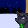 Shai meets snow by love4shadow