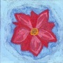 Flower by HiddenPurgatory