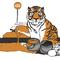 Tiger Crossing