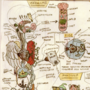 Anatomy 2: inner organs