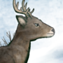 i drew a deer there's literally nothing more to it