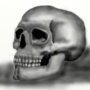 Skullistic by Allacon