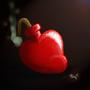 The Heartbomb by InukiRuki
