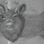 Mounted Deer Head by SiLvErShOt10