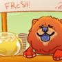 Chow Chow's Lemonade Stand