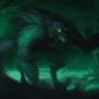 In a Dark Forest