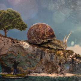 Snail \Island