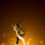Passion of Fire by Lordboy54