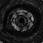 [(OEIL)] . by . Khalid EL Morabethi