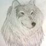 Wolf Head by slafarg
