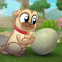 What to expect when you egg-specting - Puppy Dog Pals