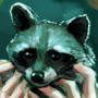 Jolyne Finds A Raccoon