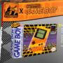 Newgrounds on Gameboy PicoDay95