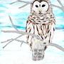 Owl in a Winter Breeze by Lugen