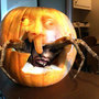 Halloween. by danomano65