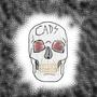 The Artist's Skull by Crazystuff