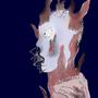 Flare by Doomydoomdomm