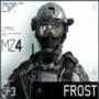 Frost by Frost4