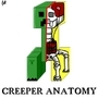 Creeper's Anatomy by FregosoMedia