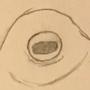 Thwacktopus