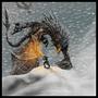 World Eater VS Dovahkiin