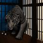 Tiger Cub by J-qb