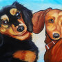 Dachsunds by ShawnCoss
