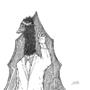 Sir.Ostrich by ShizzleCreature