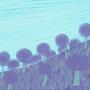 Strange Purple Land by Boggerbead