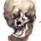 paper skull