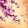 Cherry Blossoms by BiggCaZv2